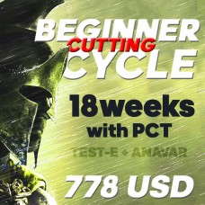 Beginner Cutting cycle