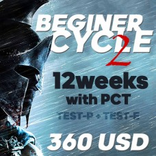 Beginner cycle 2