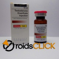 Testosterone Enanthate (10ml)