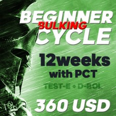 Beginner BULK cycle